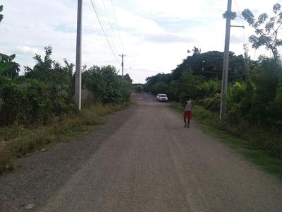 Solar En Venta En La Carretera Jacagua