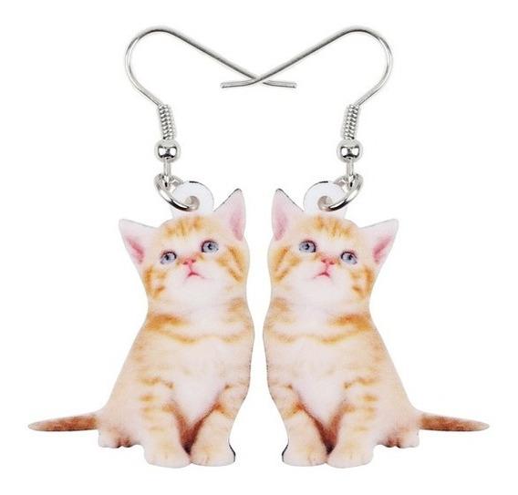 Genial Par De Aretes De Acrilico Gatito Minino Gato Cat