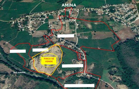 Amina Pueblo - Se Vende Finca 123 Tareas Con Titulo