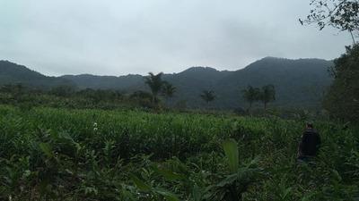 Sítio Em Itanhaém, Área Medindo 288 Mil M²ref 4648