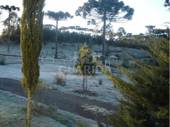 Sitio - Zona Rural - Ref: 56567 - V-56567