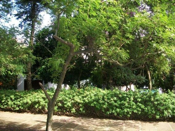 Casa Residencial À Venda, Espírito Santo, Porto Alegre. - Ca0388