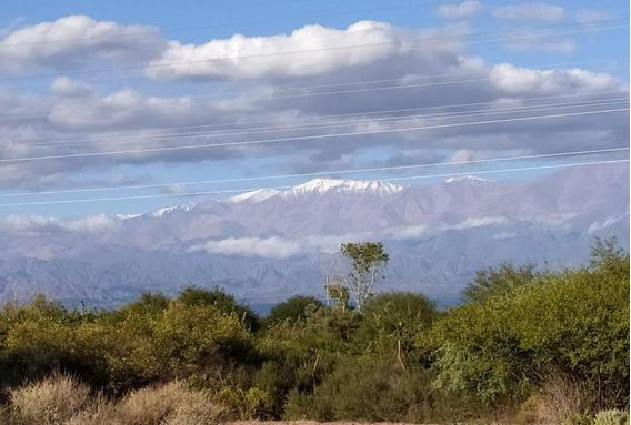 Chacra En Venta - 10 Ha En Villa Union, Provincia De La Rioja - Viñedos, Apto Turismo Y Loteo