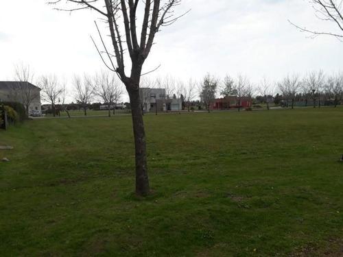Imagen 1 de 3 de Terreno En Venta En Haras Del Sur Ii