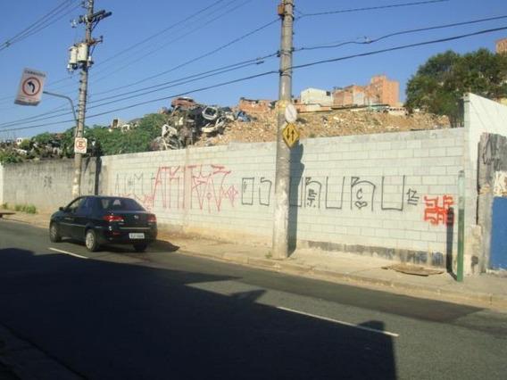 Terreno Padrão Em São Paulo - Sp - Te0025_sales
