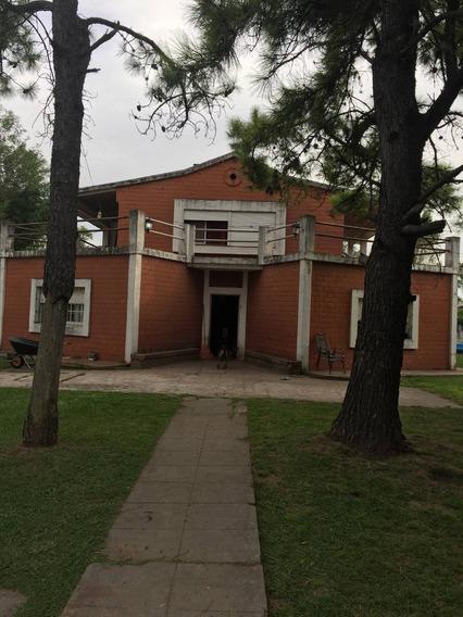 Quinta Francisco Alvarez Pta/vende Barrio Gorriti