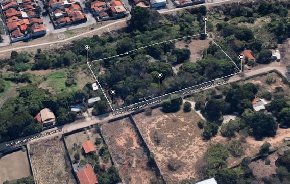 Excelente Terreno De 10.700m² No Bairro Chacara Cotia - 6487