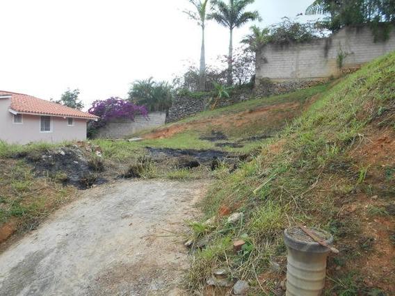Elys Salamanca Vende Terreno En Caicaguana Mls #20-12791