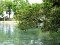 Venta De Terreno Frente A Laguna De Bacalar, Q.r.