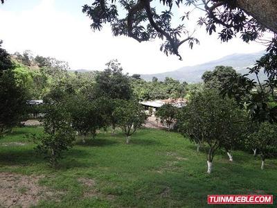 Vendo Terreno Con Casa De Campo En Aguirre