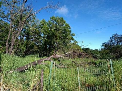 Imagem 1 de 6 de Terreno Comercial À Venda, Barroca Funda, Indaiatuba - Te0793. - Te0793