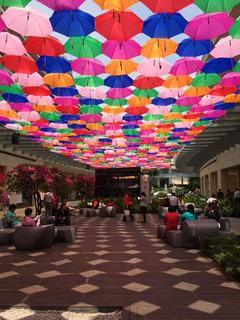 Paraguas Para Decoración