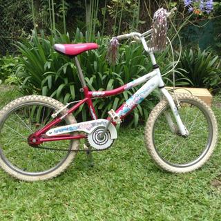 Bicicleta Raleigh Jazzi Rodado 20 Usada
