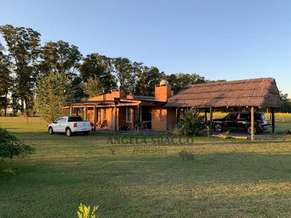 Campo En San Andres De Giles