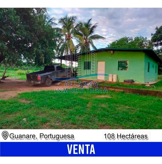Finca De 108 Hec En Guanare Alianza Inmobiliaria 04245006548