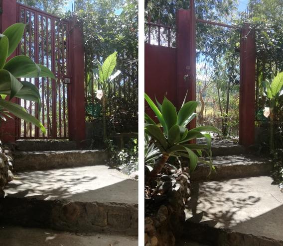 Alquiler Casa Pequeña Higuito Desamparados