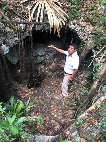 5 Hectáreas Ejidales Con Cenote !!!!