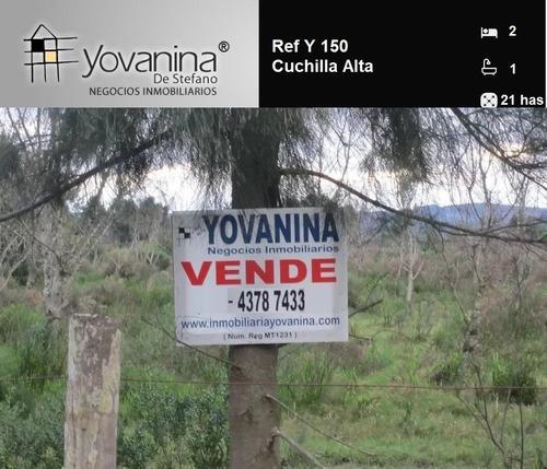 Campo 21 Hectáreas Cuchilla Alta Ref. Y 150