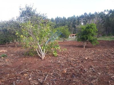 Sítio Para Venda Em Piraju, Rural - St 027
