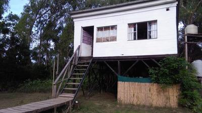 Isla Arroyo Arroyon Delta Tigre