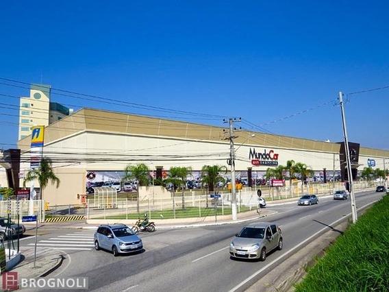 Loja Comercial No Bairro Kobrasol - 29395