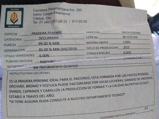 Mezcla De Semilla De Pasto Green Perenne