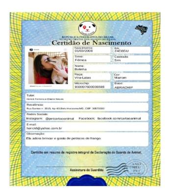 Certidão De Nascimento E Rg Para Seu Bichinho Estimação Pet