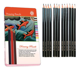 Regalo* + Lapicera + Set Lapices Dibujo Grafito Profesional