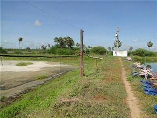 Fazenda Em Santo Antônio, Mossoró/rn De 390000m² À Venda Por R$ 1.500.000,00 - Fa264013