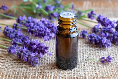 Aceite Esencial Lavanda 5lt Puro Aromaterapia