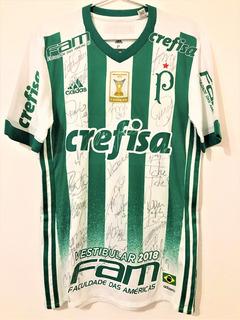 Camisa Palmeiras Usada Jogo Brasileiro 2017 Autografada Todo