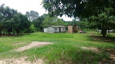 Fazenda A Venda Em Taboco - Ms (pecuária - 826