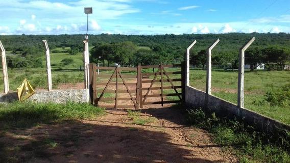 Chácara Em Monte Alegre, Monte Alegre/rn De 0m² À Venda Por R$ 800.000,00 - Ch265390