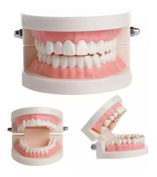 Tipodonto Dental Envio Gratis Full