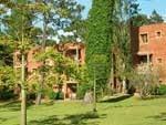 Alquilo Apartamento - Punta Del Este - Tiempo Compartido