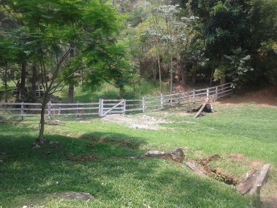 Fazenda A Venda No Bairro Centro Em Roseira - Sp. - 212-1