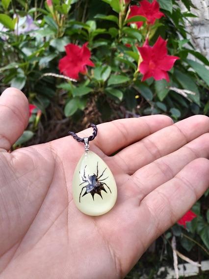 Colar Pingente Aranha Black Fosforescente Importado.