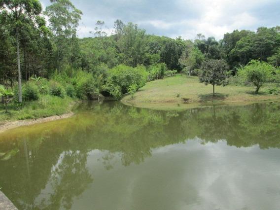 Sitio Em Juquitiba Com Mini Cachoeira Muita Água