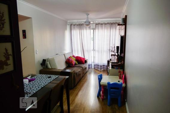 Apartamento Para Aluguel - Vila Mascote, 2 Quartos, 58 - 893094509
