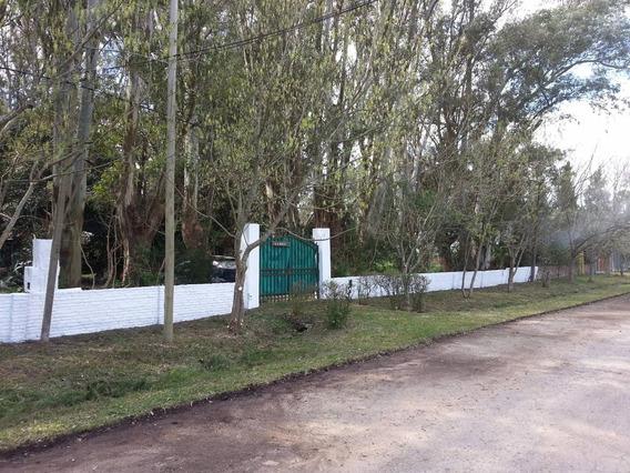 Magnífica Casaquinta Sobre Ruta 2 - Km. 57 - Piscina - Arbo