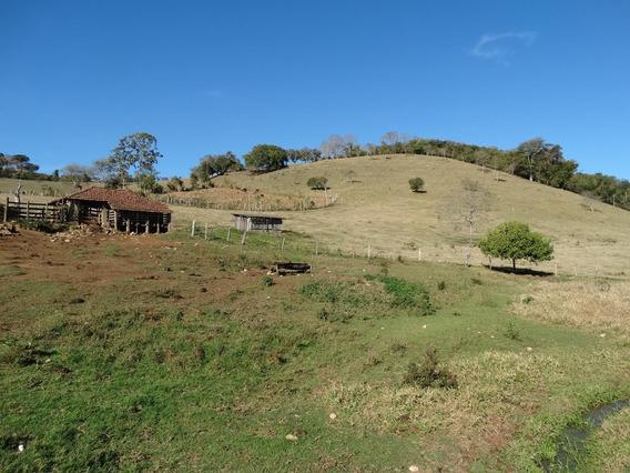 Chácara, Para Venda Em Paraisópolis/mg - Imob15