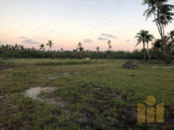 Ilha À Venda, 28000 M² Por R$ 5.400.000,00 - Poeira - Marechal Deodoro/al - Te0042