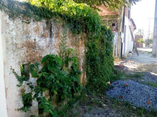 Terreno Em Rua Asfaltada No Litoral De Itanhaém - 6219 | Npc