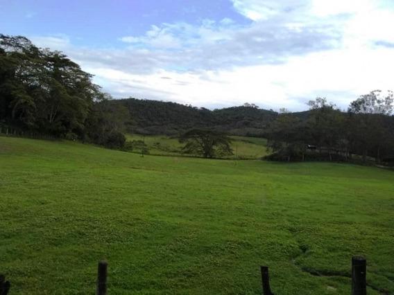 Finca Productiva En Montalbán - Carabobo