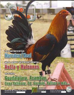 Revista De Interés General De Gallos Dic 2013 # 185