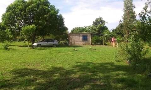 Maison Inmobiliaria Vende Finca En San Carlos 04145431974