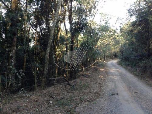 Sítio À Venda Em Zona Rural - Si001907