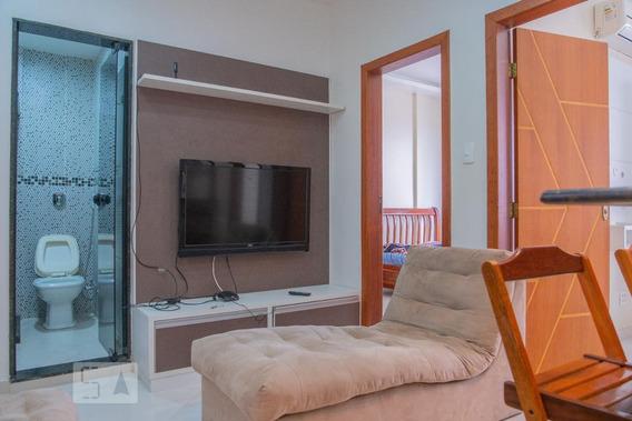 Apartamento Para Aluguel - Santa Teresa, 2 Quartos, 45 - 893014335