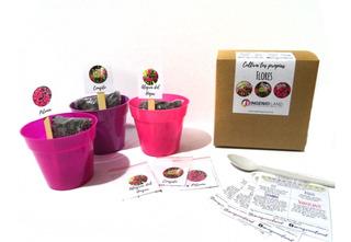 Kit Cultivo Niños Regalo Siembra Huerta Maceta Semillas X3