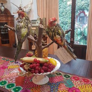 Par De Aves De Decoracion Antiguos Con Base Madera